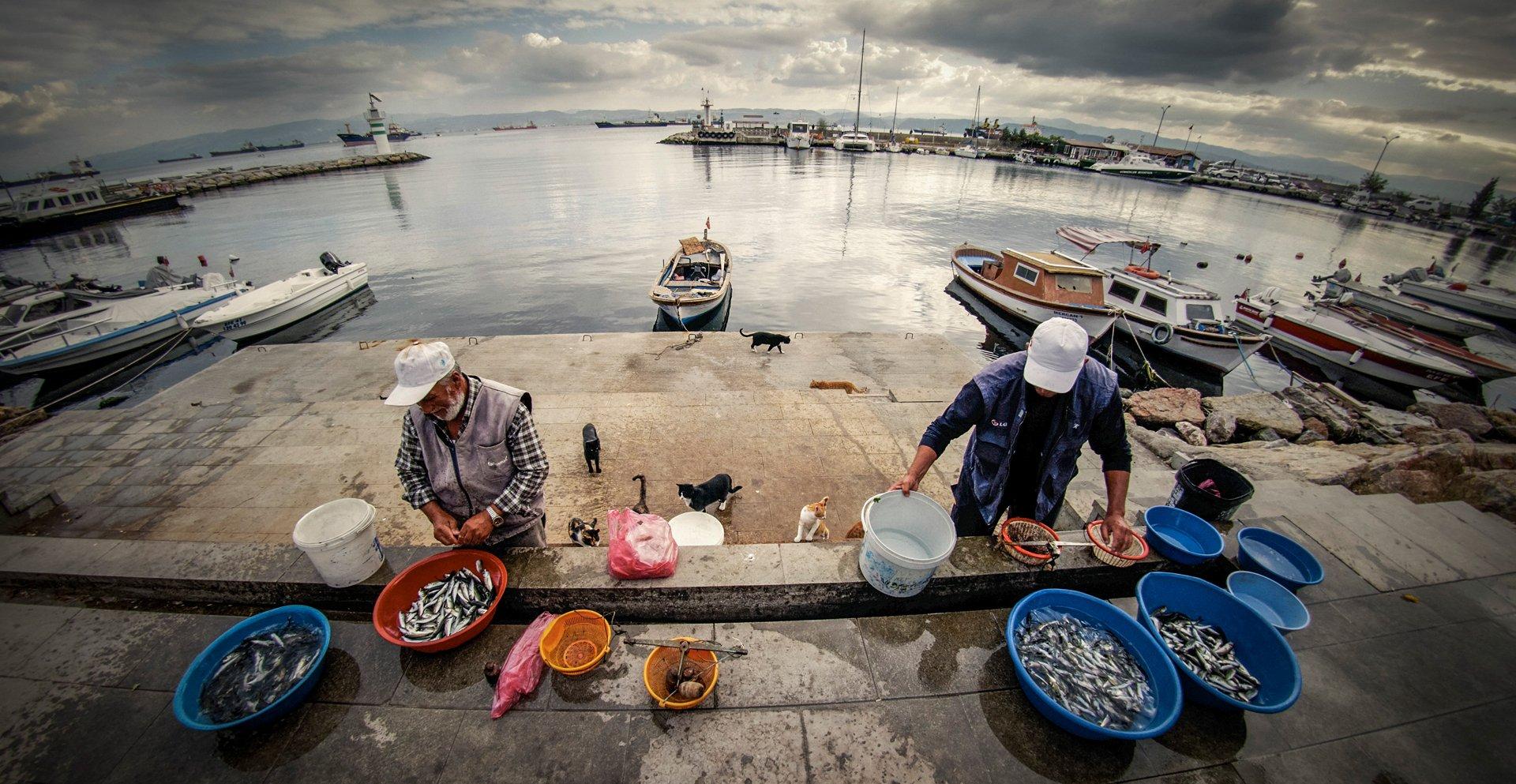 Eskihisar Balıkçılar